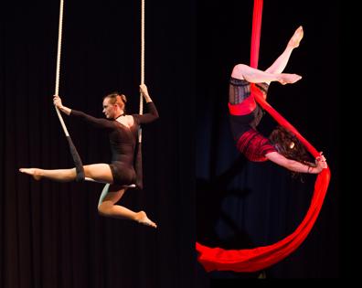 RR trapeze EC fabric